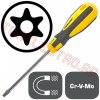 Surubelnita Torx T40 x 100mm Safety, cap Magnetic - Proline 10196